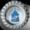 Финалист пятой Народной премии по версии Pskovlive.ru (2014 г.)- 2-е место