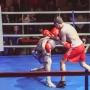 Вечер профессионального бокса 2014.