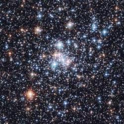Истории о звездах (6+)