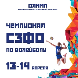 Чемпионат СЗФО по волейболу (6+)