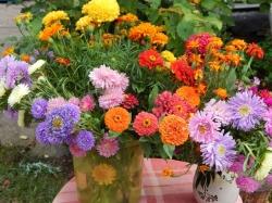 Летние вечера в Пушкинском Заповеднике. «Цветы последние милей». Закрытие летнего концертного сезона (12+)
