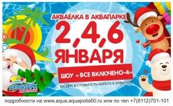 Аква-Елка в аквапарке