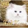 Кот как символ года, выставка