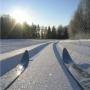 Лыжня России 2011