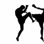 Чемпионат и первенство области по кикбоксингу