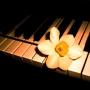 Музыкальные шедевры