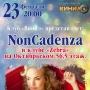 Non Cadenza, концерт