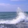 Такое разное море. Летние впечатления, выставка