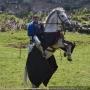 «Железный град», 8-й Международный фестиваль военно-исторической реконструкции и средневековой культуры
