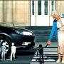 «Взгляд через объектив», финал Всероссийского конкурса социальных роликов (12+)