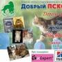 Любительская выставка кошек (0+)