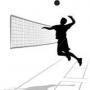 Первенство России по волейболу среди юношей 1999-2000 г.р.