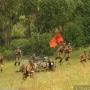Реконструкция боевых действий начала июля 1941 года на Линии Сталина (0+)