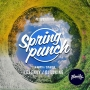 Spring punch, вечеринка (18+)