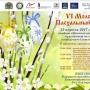 VI ежегодный молодежный Пасхальный фестиваль (0+)