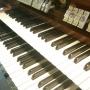 Мария Блажевич, концерт органной музыки (0+)
