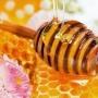 Медовые реки, Выставка-продажа меда (0+)