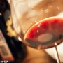 Кругосветное путешествие по континентам и винам (18+)