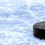 «Серебряные львы-2» — «Йети», Турнир по хоккею «Кубок Довмонта» среди команд 2009г.р. (0+)