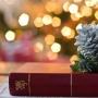 Книжный Новый год», интерактивная программа (0+)