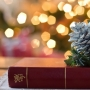 Обзор книг «Тема Рождества Христова в произведениях русских писателей» (0+)