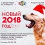 Новый 2018 год, вечеринка (18+)