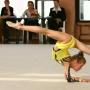 20-й межрегиональный турнир по художественной гимнастике (0+)