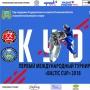 Международный турнир по кудо Baltic Cup (0+)