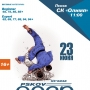 Открытый турнир по Джиу-Джитсу PSKOV OPEN 2018 (16+)