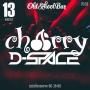 D-Space Cherry, вечеринка (18+)