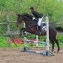 Первенство Пскова по конному спорту (6+)