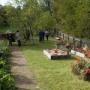 «…Веселый сад, где вместе Флора и Помона…», выставка осенних цветочных и плодовых композиций (6+)