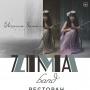 Первый камерный концерт группы Zima band (18+)