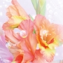 «Чистейшей прелести чистейший образец…», литературно-музыкальная программа (12+)