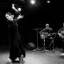 Вечер фламенко (12+)