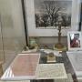 «Отрядом книг уставил полку, Читал, читал…», выставка (6+)