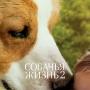 Собачья жизнь 2(12+)