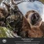 «Самая красивая страна», фотовыставка Русского географического общества (6+)