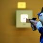 Первенстве города Пскова по пулевой стрельбе (12+)
