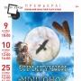 Премьера спектакля «Прыгучий мышонок» (6+)