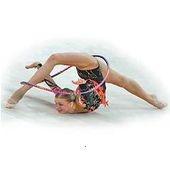 Детская юношеская спортивная школа по художественной гимнастике