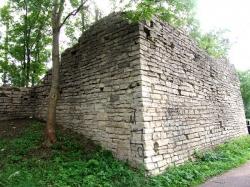 Волковская башня