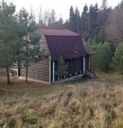 Дом в лесу посуточно