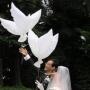 Био Голуби Псков (для свадьбы и др. праздника)