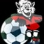 Спортивная детская юношеская школа олимпийского резерва по футболу