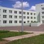 МБОУ «Владимирская средняя общеобразовательная школа»,Струги-Красные-1