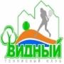 Теннисный клуб Видный